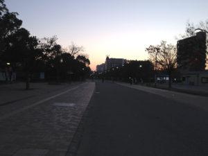 夜明け前の長居公園